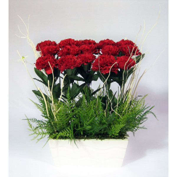 Send Dozen Red Carnations Flower Gifts To Dubai With Flowers Dubai