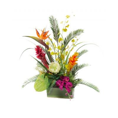 Tropical Beauty DA