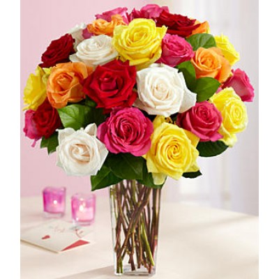Amor (24 Mixed Roses) GW