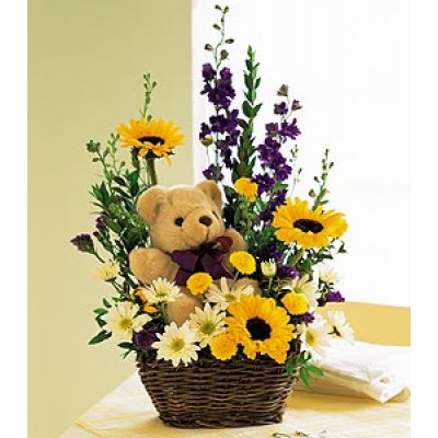 Basket of Bear Blooms HB